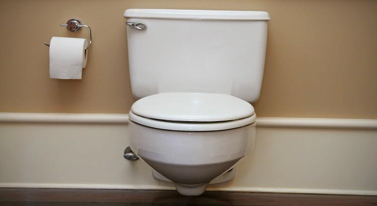 C'est quoi un wc Sanibroyeur ?