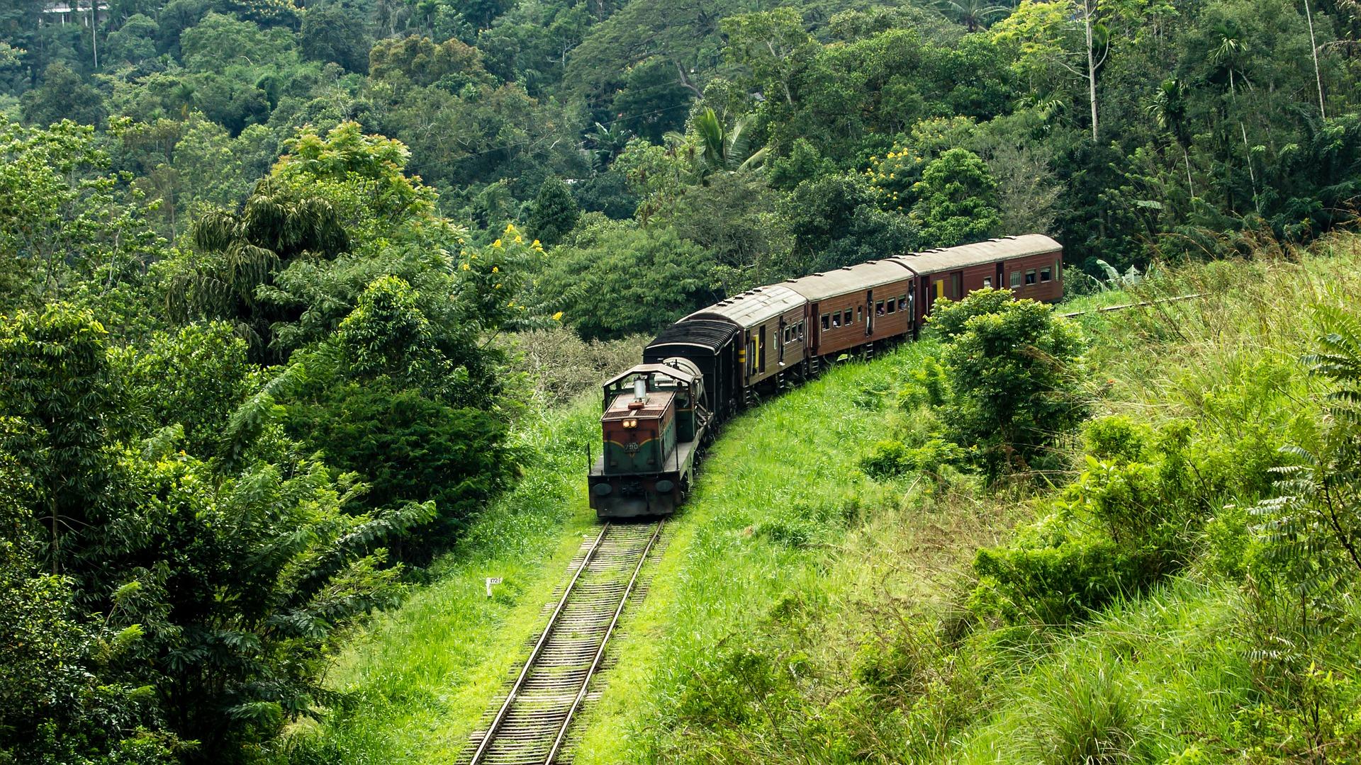 Faire du tourisme autrement lors d'un voyage au Sri Lanka